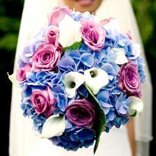pekne farebna aj s modrou....chcem mudru.... :-)