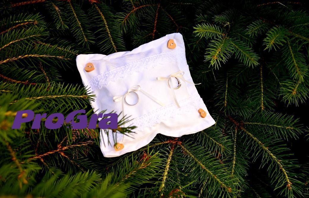 Detaily pre Váš svadobný deň - handmade svadobný vankúšik na obrúčky Romantik