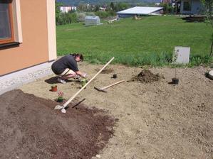 a už zahajujeme výsadbu zeleně