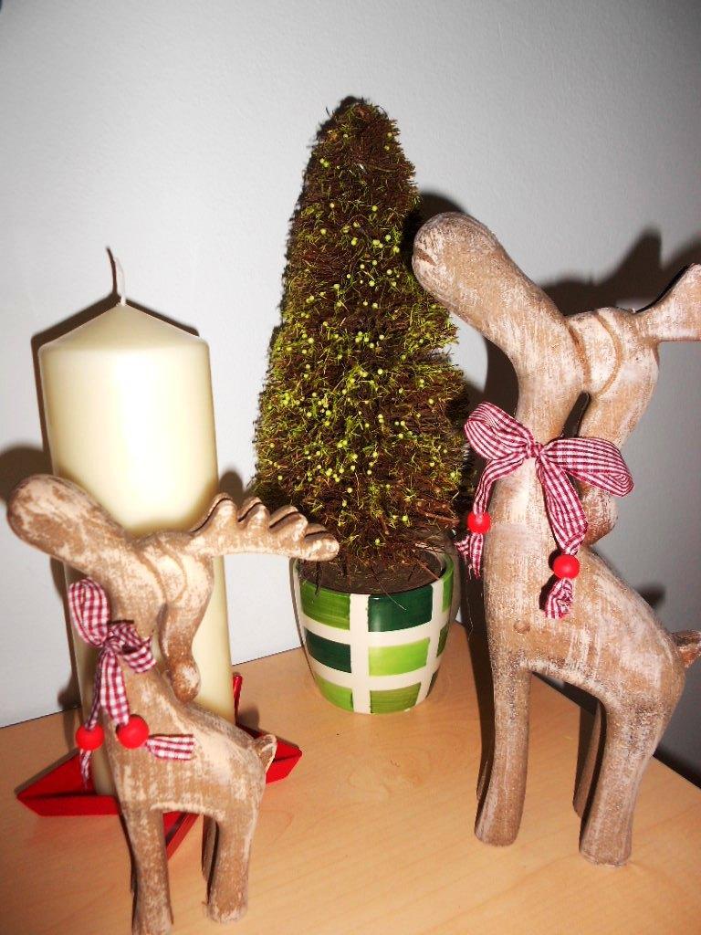 Vianočný stromček v črepníku  - Obrázok č. 1