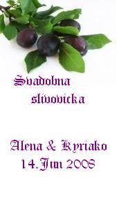 Zaciname... 14.6.2008 - Aj na slivovicku....