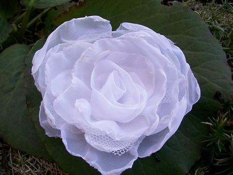 Sněhově bílá růže do vlasů - barva na přání - Obrázek č. 1