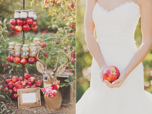 Jablká a hrušky na svadbe - Obrázok č. 3