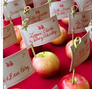 Jablká a hrušky na svadbe - Obrázok č. 8