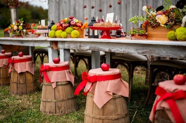 Jablká a hrušky na svadbe - Obrázok č. 17