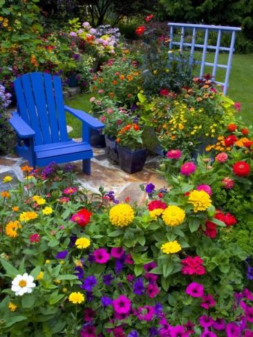 ... keď záhrada rozkvitne ... - Obrázok č. 4
