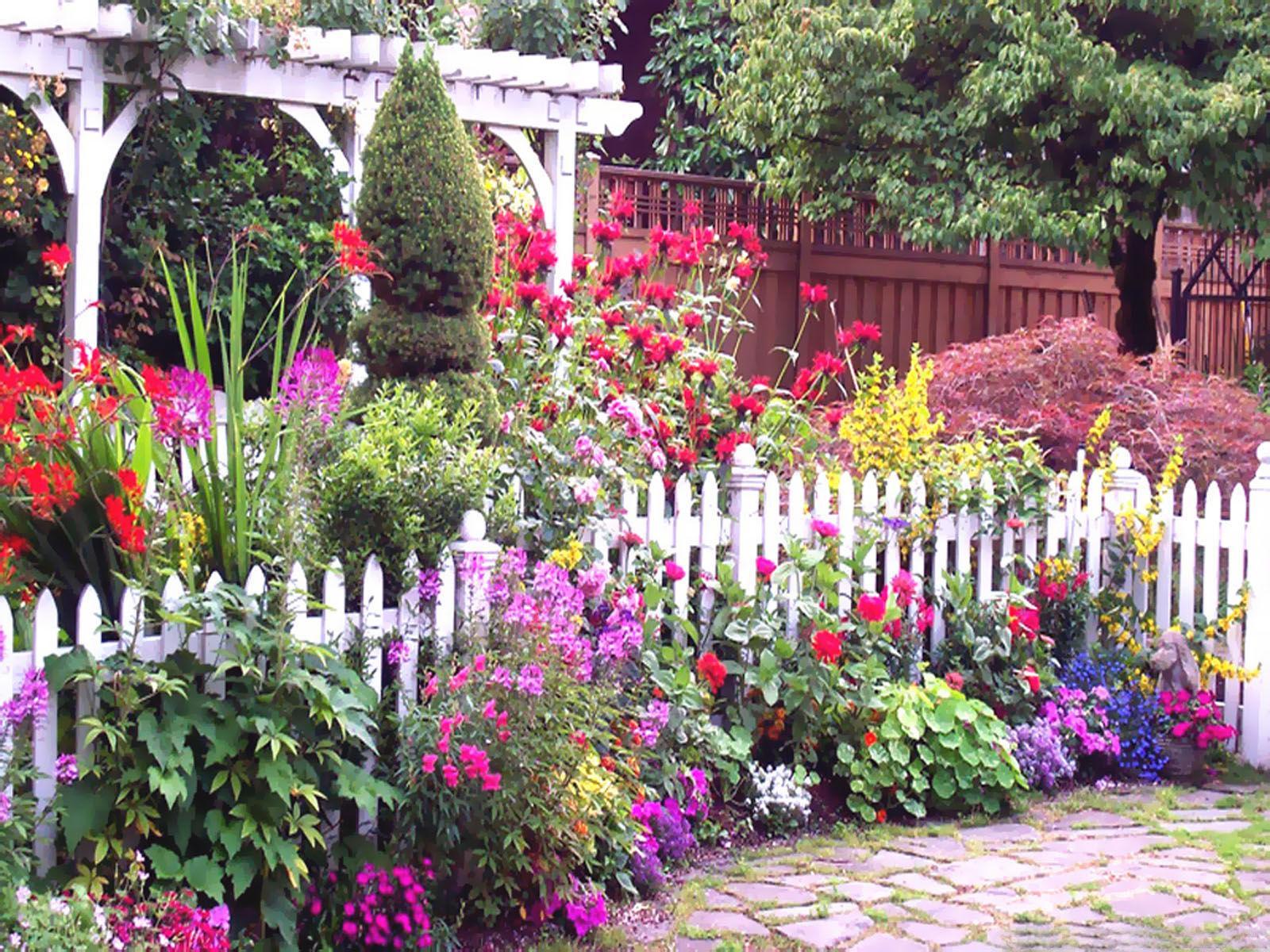 ... keď záhrada rozkvitne ... - Obrázok č. 7