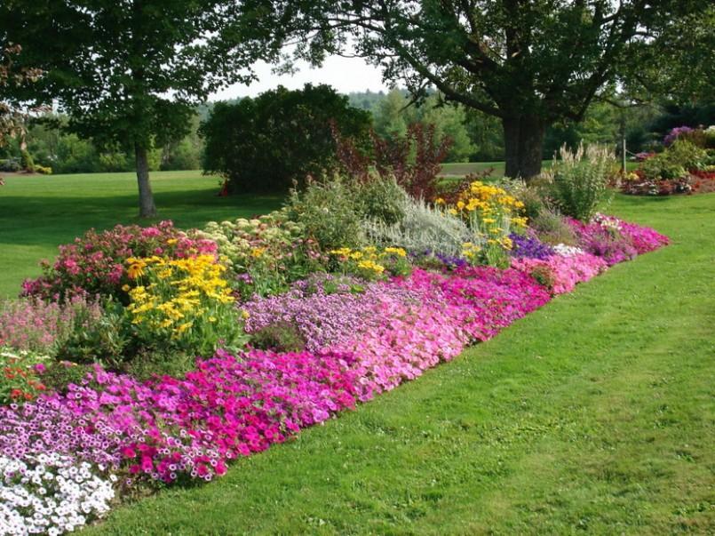 ... keď záhrada rozkvitne ... - Obrázok č. 8