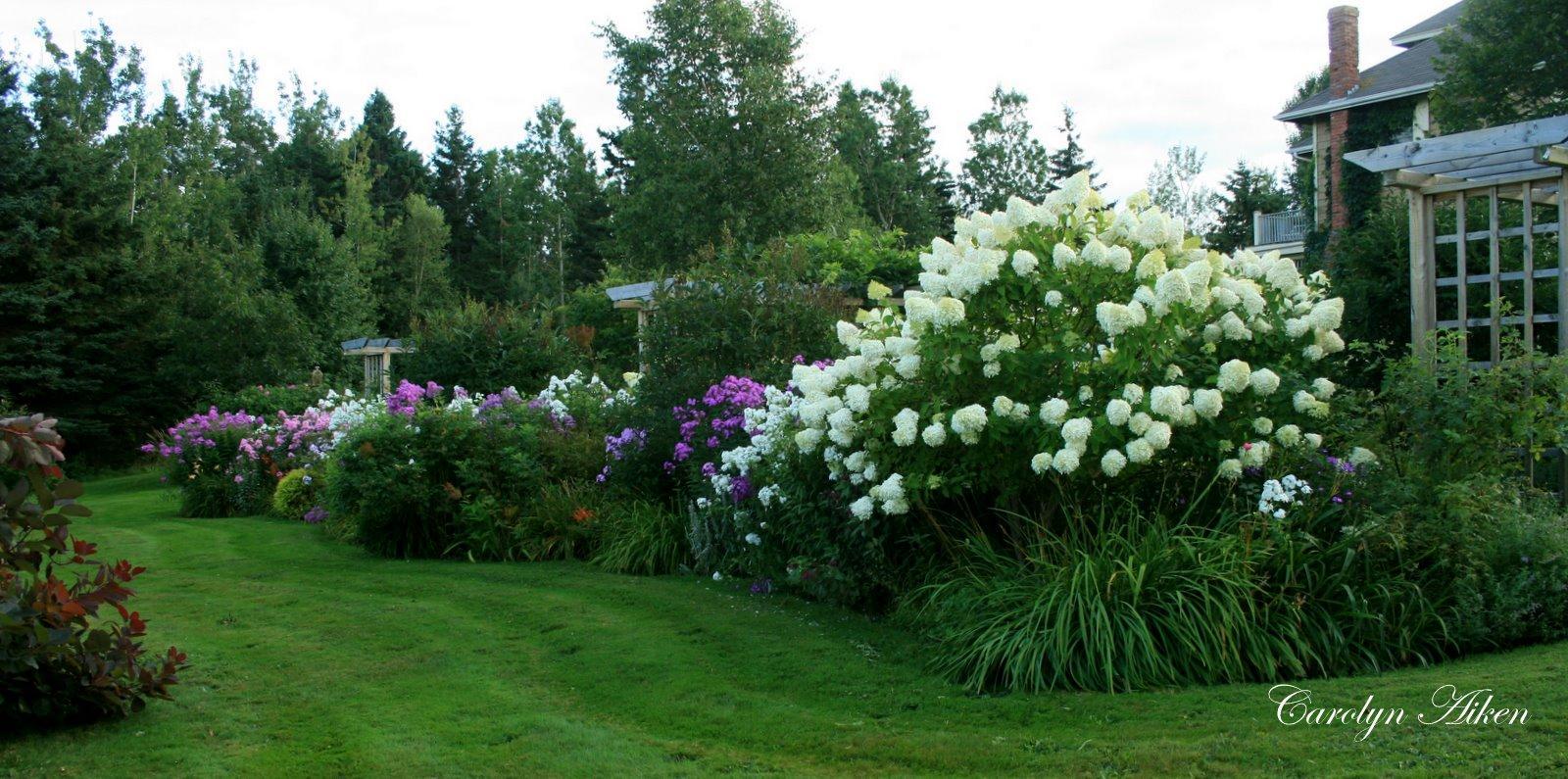 ... keď záhrada rozkvitne ... - Obrázok č. 9