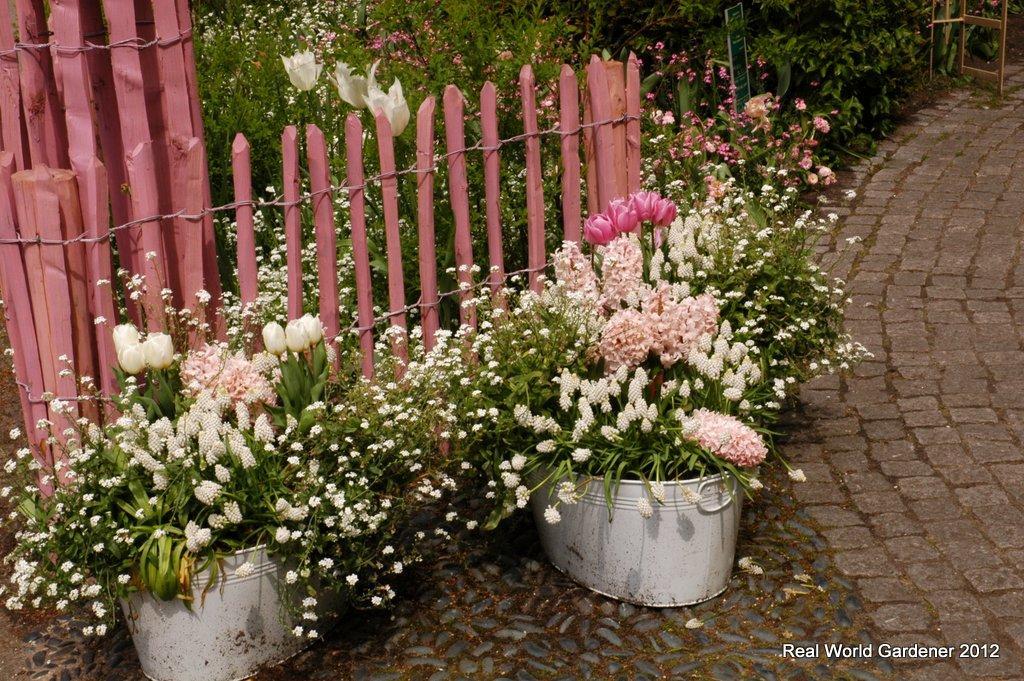 ... keď záhrada rozkvitne ... - Obrázok č. 10