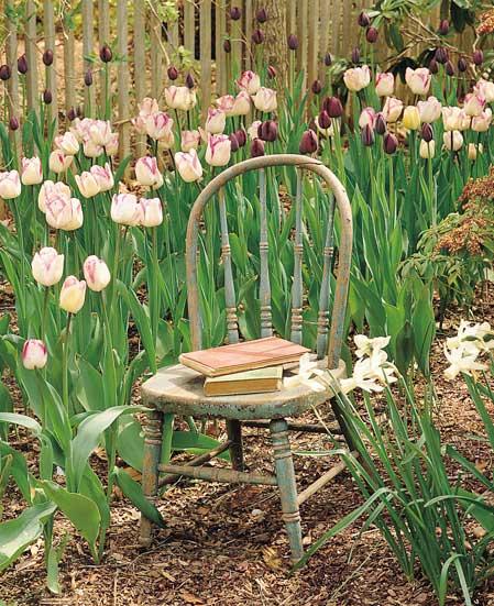 ... keď záhrada rozkvitne ... - Obrázok č. 11