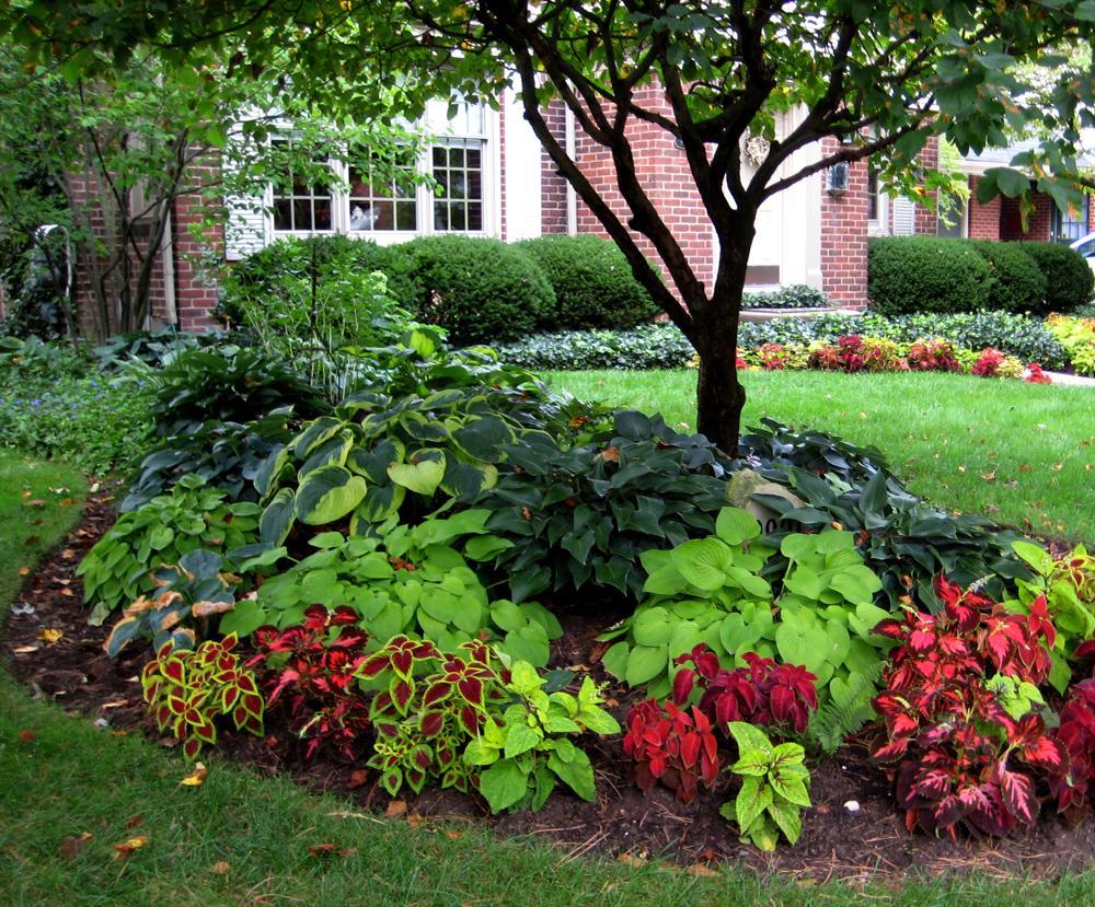 ... keď záhrada rozkvitne ... - Obrázok č. 14