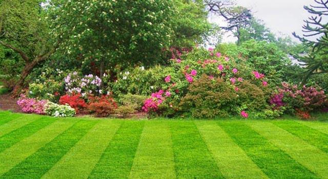 ... keď záhrada rozkvitne ... - Obrázok č. 15