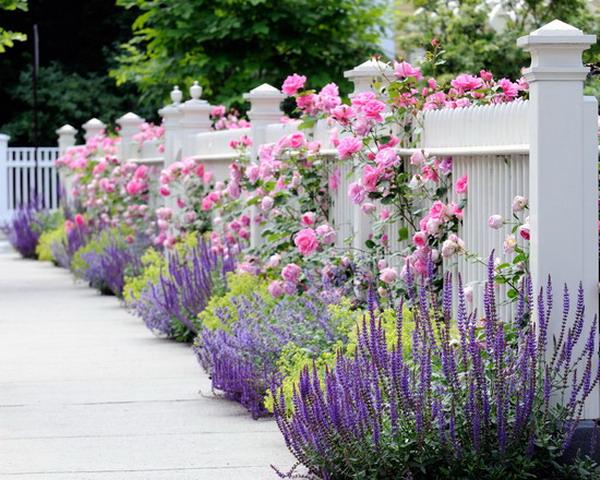 ... keď záhrada rozkvitne ... - Obrázok č. 18