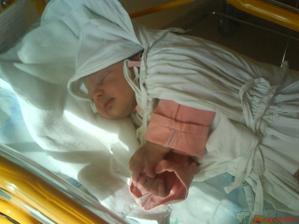 Vanesska v porodnici