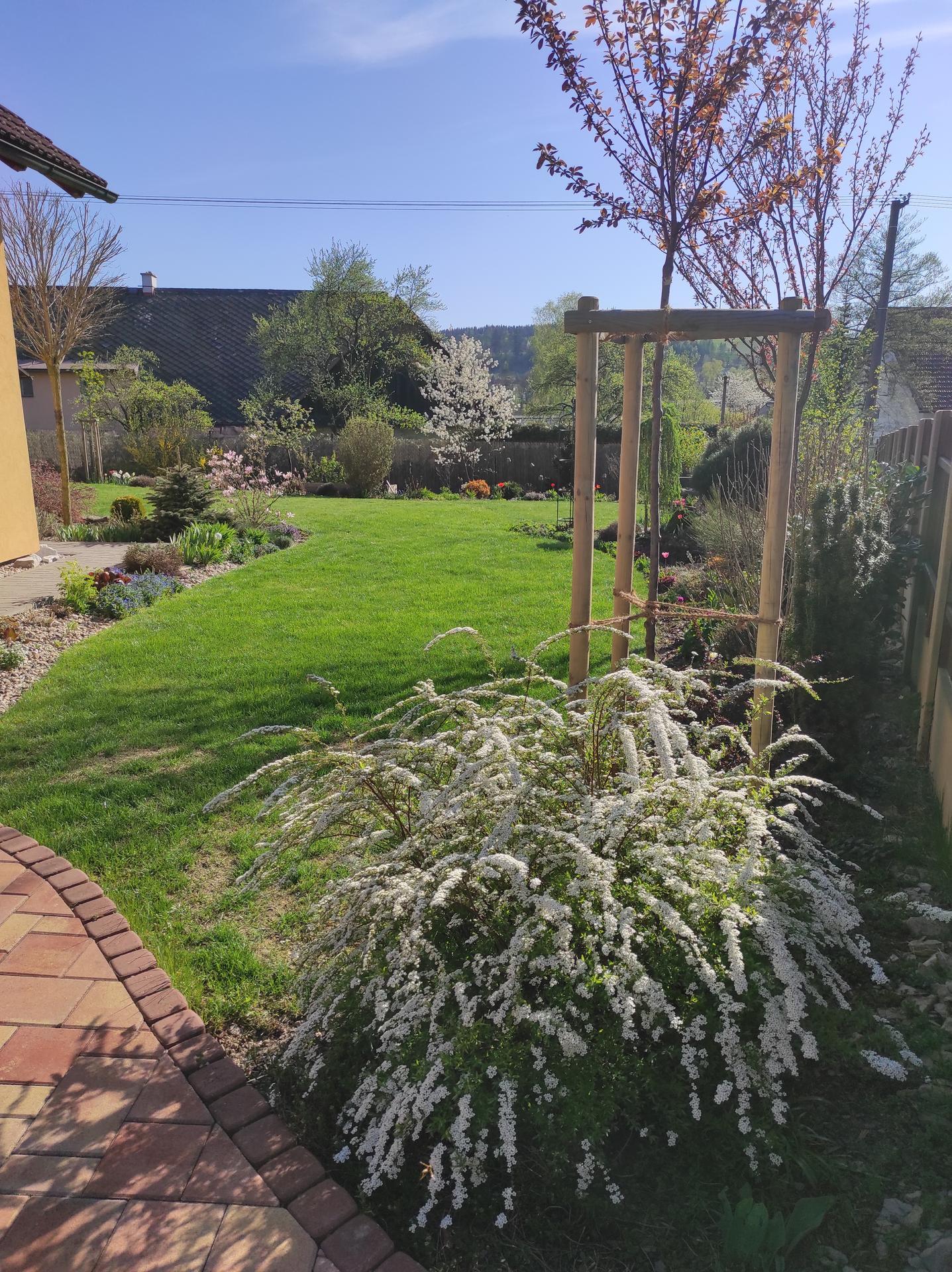 Zahrada 2021 - Obrázek č. 3