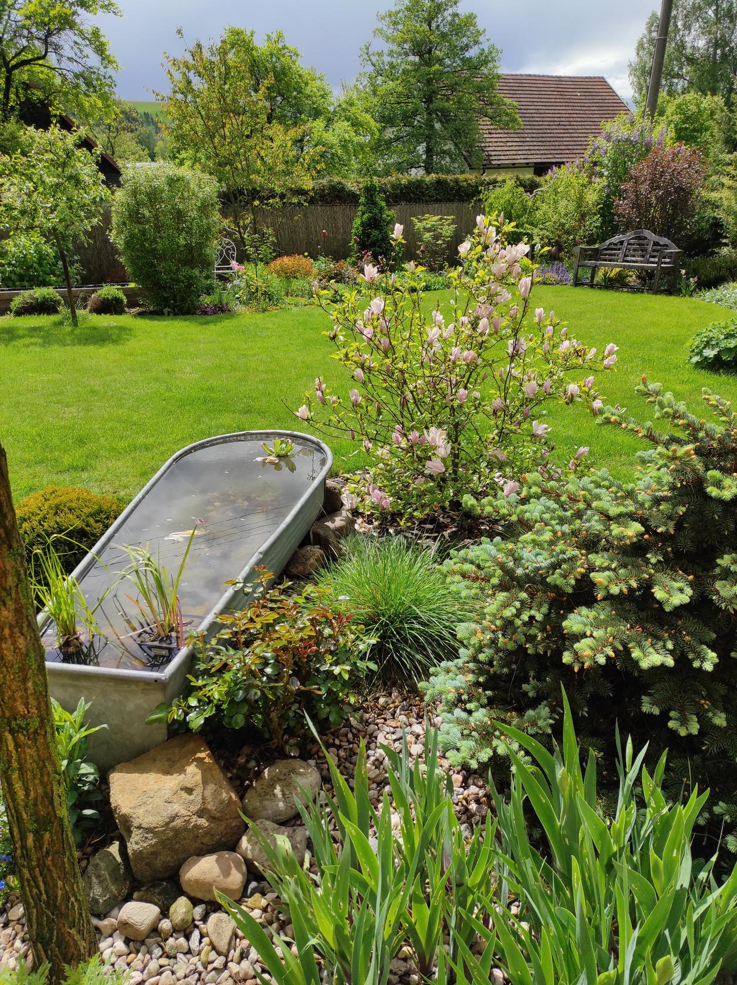 Zahrada 2021 - Obrázek č. 26