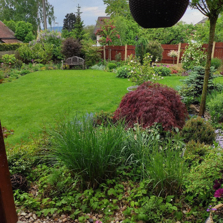 Zahrada 2021 - Obrázek č. 36