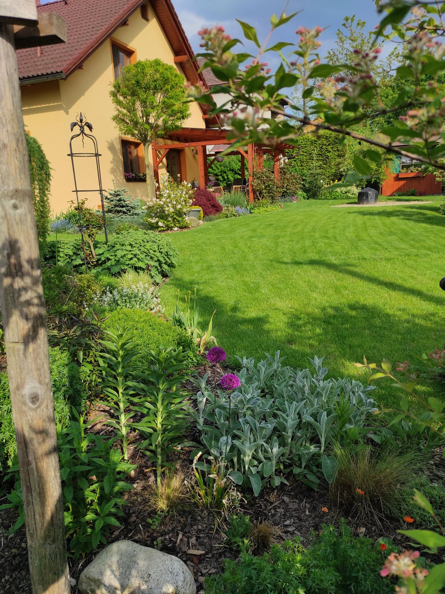 Zahrada 2021 - Obrázek č. 39