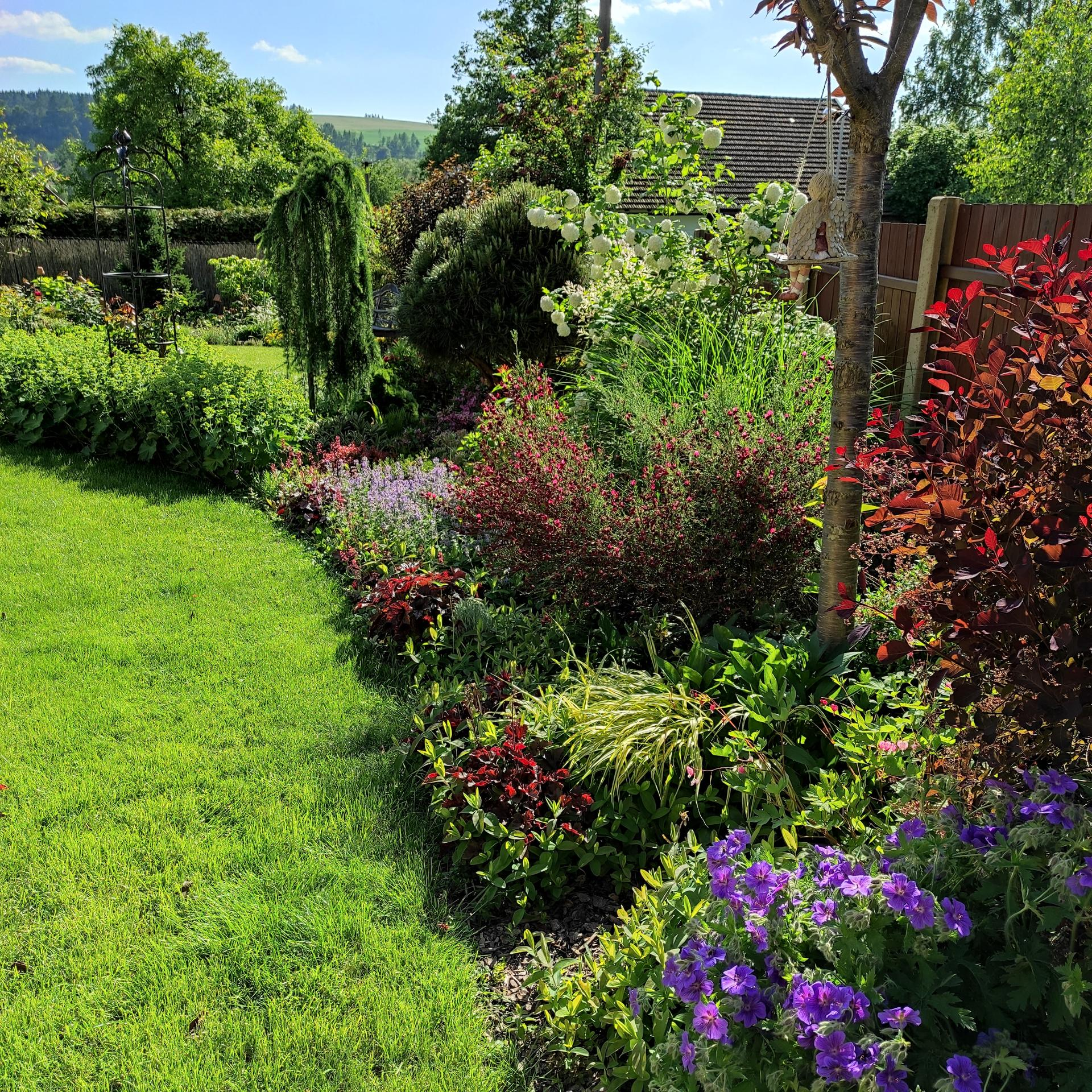 Zahrada 2021 - Obrázek č. 40