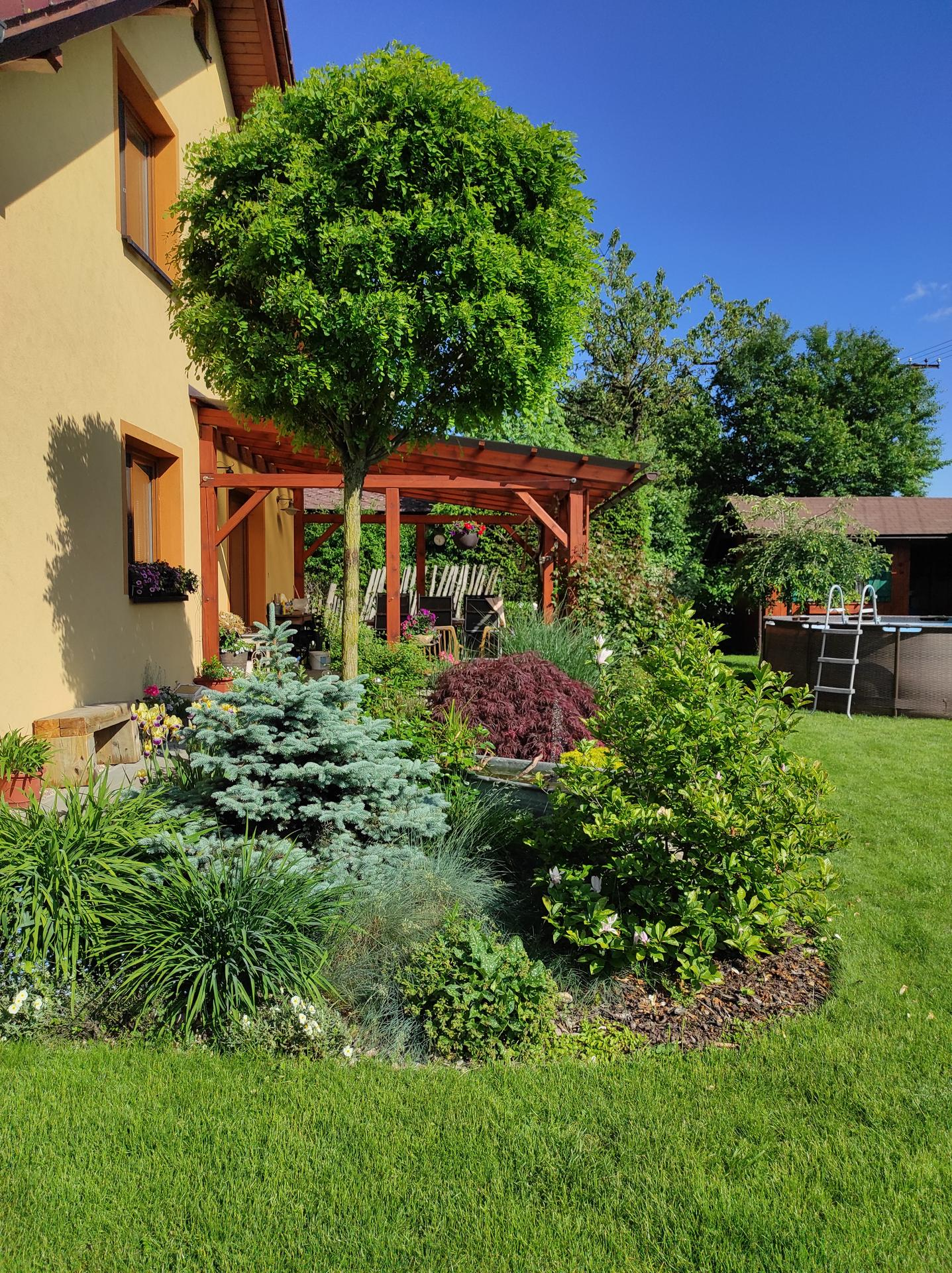 Zahrada 2021 - Obrázek č. 41