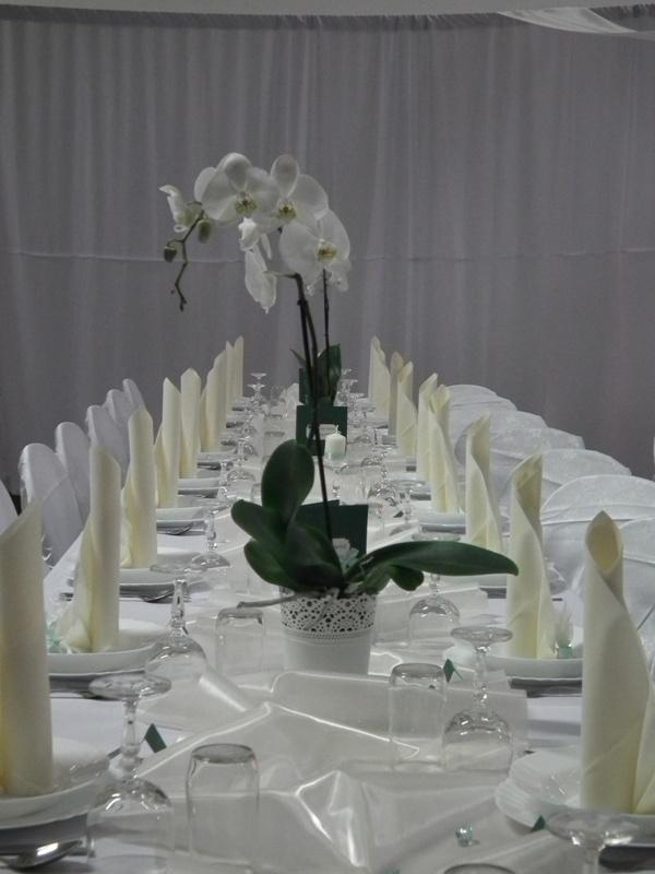 kamarátka mala biele orchideie... - Obrázok č. 4