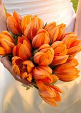 ...oranžové vypůjčené od nevěsty odsud - omlouvám se za vypůjčení snímku...