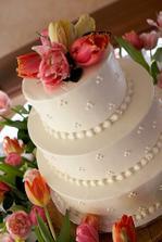 Tulipánový dort...