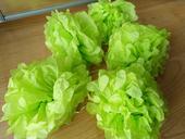 Světle zelené pompoms 25 cm (5x),