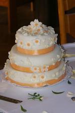 Příště bych vybrala jiný dort, vůbec se mi nelíbil :(