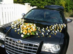úžasné, ale jen na tmavé auto :-(