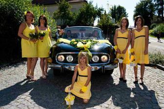 moje žluté lásky