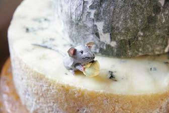 A sýrový dortík