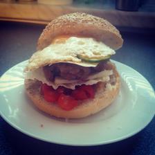 domácí burgr (hořčice, směr rajčátek a cibule, zelí, maso, sýr, okurky a vejce)