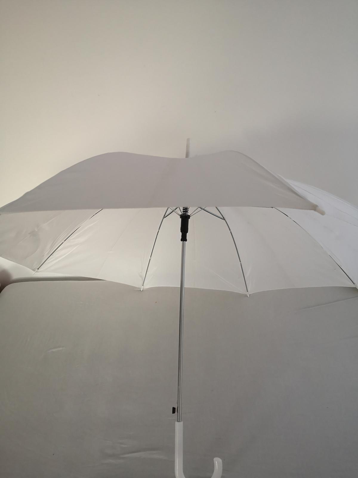 Daždnik - Obrázok č. 1