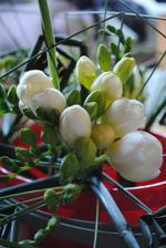 Vtipné květinky pro naše maminky ;)