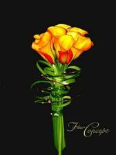 svatba bude do oranžova, v kytici budou rozhodně oranžové kaly