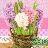 Ubrousky papírové s potiskem 20 ks - hyacinty,