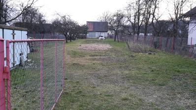 Posledná foto starej záhrady. Zrezali sme stromy v prednej časti. 21.3.15