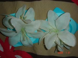 takove kvetinky
