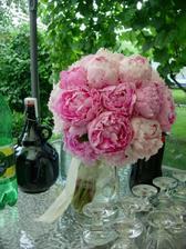 Čo už máme - Pivónie - jediné kvety ktoré chcem