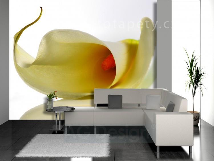 Náš  byteček - tuhle tapetu chci do obýváku :-) ale mají ji jen ve velkých veliksotech snad mi ji zmenší