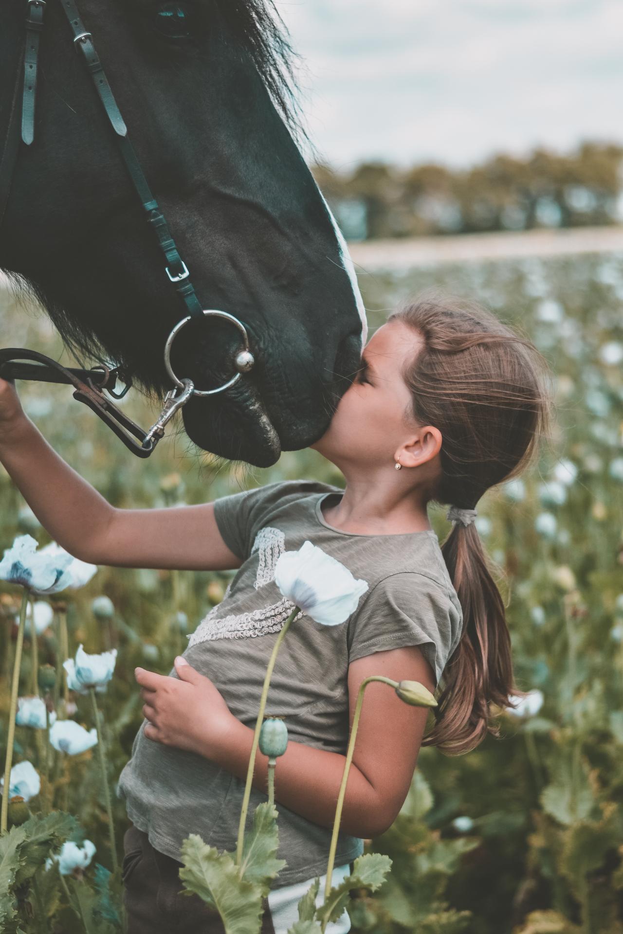 na koňoch