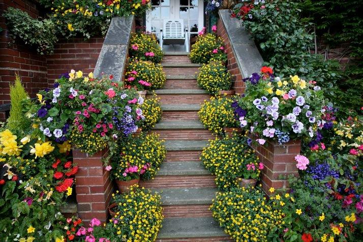 Okrasné záhrady - Obrázok č. 32