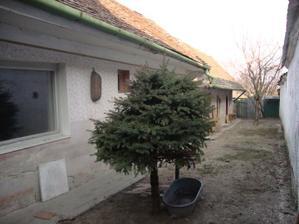 aj stromčeky budu musiet ist preč....presadiť sa :-)