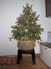Náš vianočný stromček 27.12.2008
