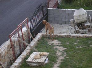 založená brána - 1.8.2009