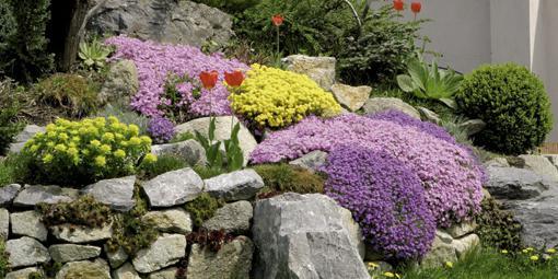 Záhrada-inšpirácie - Obrázok č. 18