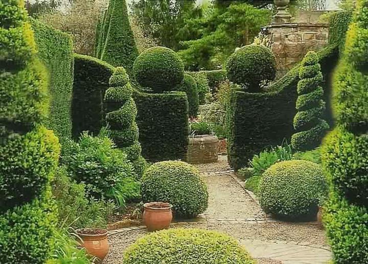 Záhrada-inšpirácie - Obrázok č. 25