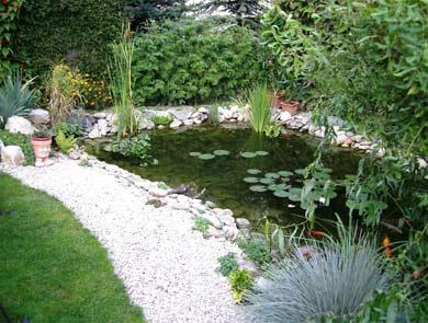 Záhrada-inšpirácie - Obrázok č. 32